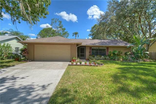 14801 Perriwinkle Place, Tampa, FL 33625 (MLS #T3268104) :: Team Bohannon Keller Williams, Tampa Properties