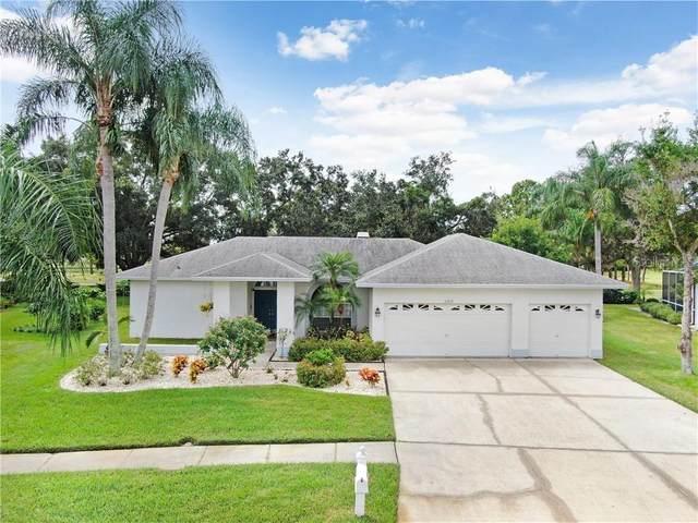 11212 Bloomington Drive, Tampa, FL 33635 (MLS #T3268160) :: BuySellLiveFlorida.com