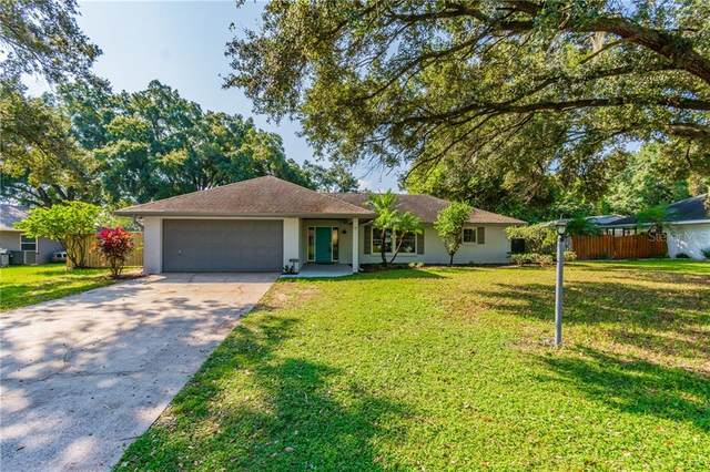 4455 Mohican Trail, Valrico, FL 33594 (MLS #T3268178) :: Dalton Wade Real Estate Group
