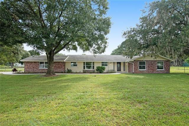 2338 Meadowbrook Drive, Lutz, FL 33558 (MLS #T3268238) :: Griffin Group
