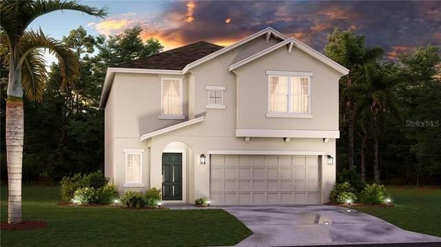 80 White Horse Way, Groveland, FL 34736 (MLS #T3268328) :: Frankenstein Home Team