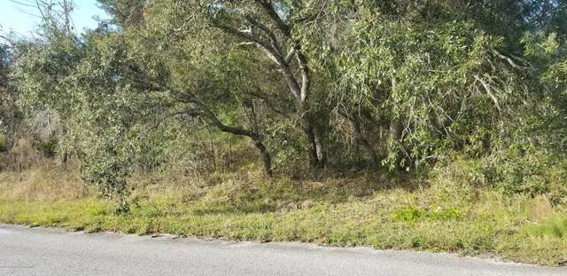 2364 W Elmore Loop, Citrus Springs, FL 34434 (MLS #T3268881) :: Sarasota Home Specialists