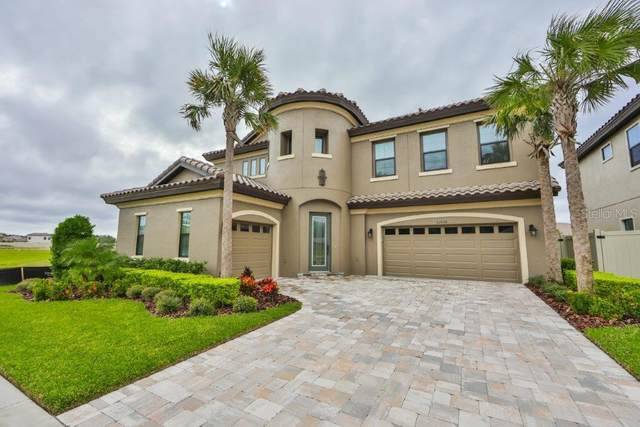 21650 Amelia Rose Way, Land O Lakes, FL 34637 (MLS #T3269082) :: Griffin Group