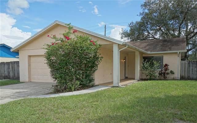 5438 Fulmar Drive, Tampa, FL 33625 (MLS #T3269173) :: Team Bohannon Keller Williams, Tampa Properties