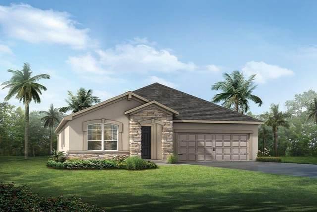11712 Wrought Pine Loop #5, Riverview, FL 33569 (MLS #T3269278) :: Frankenstein Home Team