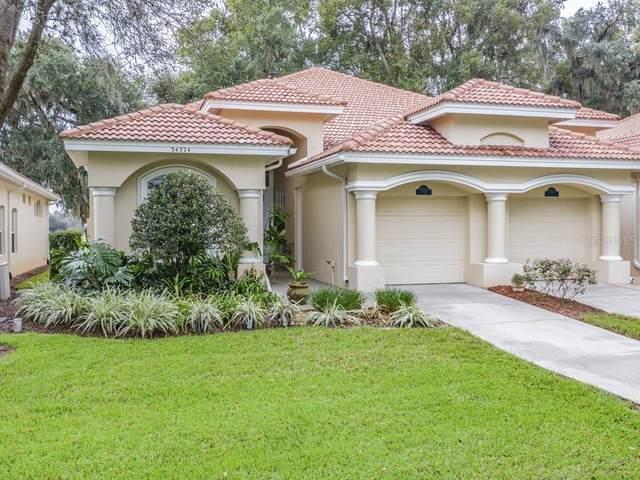 34324 Perfect Drive, Dade City, FL 33525 (MLS #T3269401) :: Team Bohannon Keller Williams, Tampa Properties