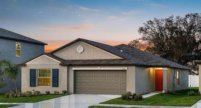 816 Calico Scallop Street, Ruskin, FL 33570 (MLS #T3269605) :: Frankenstein Home Team