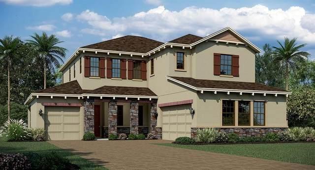 448 Dancing Water, Winter Springs, FL 32708 (MLS #T3269972) :: Frankenstein Home Team