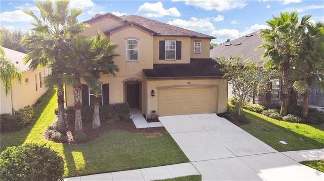 4458 Vermillion Sky Drive, Wesley Chapel, FL 33544 (MLS #T3269987) :: Team Bohannon Keller Williams, Tampa Properties
