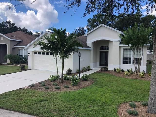 4123 101ST Avenue E, Parrish, FL 34219 (MLS #T3270016) :: Bridge Realty Group
