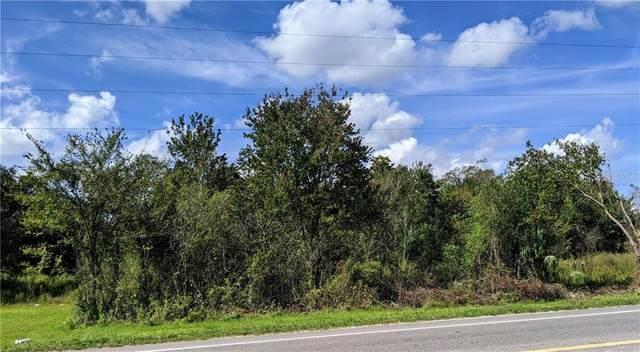 Paul S Buchman, Zephyrhills, FL 33540 (MLS #T3270124) :: Griffin Group