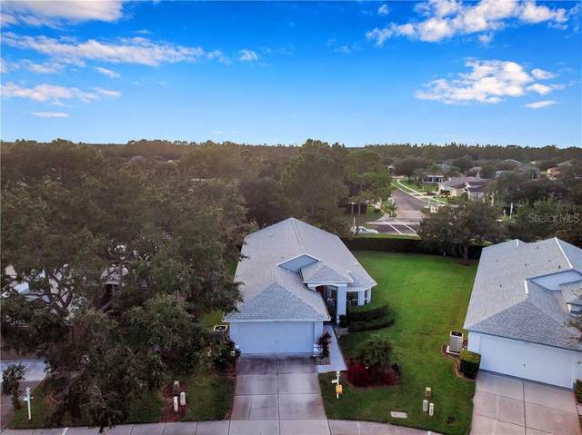 1447 Hickory Moss Place, Trinity, FL 34655 (MLS #T3270180) :: Frankenstein Home Team
