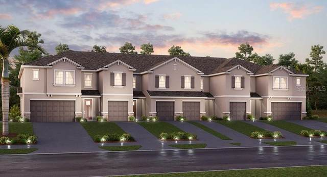 8081 Rolling Shell Trail, Wesley Chapel, FL 33545 (MLS #T3270199) :: Real Estate Chicks