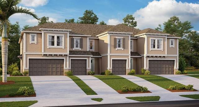 8085 Rolling Shell Trail, Wesley Chapel, FL 33545 (MLS #T3270200) :: Real Estate Chicks