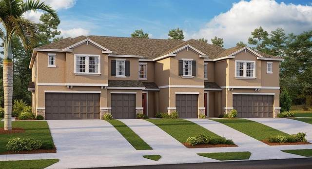 8077 Rolling Shell Trail, Wesley Chapel, FL 33545 (MLS #T3270206) :: Real Estate Chicks