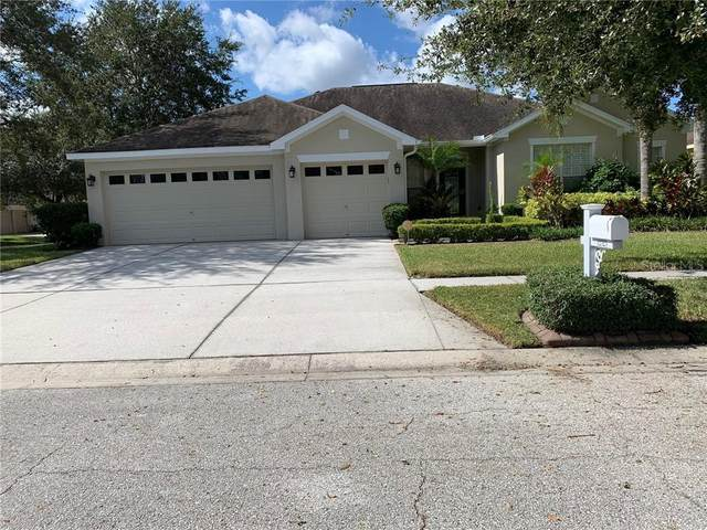 12523 Safari Lane, Riverview, FL 33579 (MLS #T3270289) :: Frankenstein Home Team