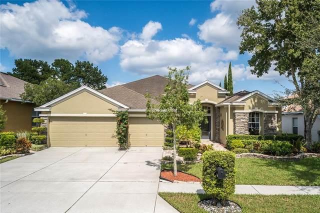23507 Abercorn Lane, Land O Lakes, FL 34639 (MLS #T3270368) :: Team Bohannon Keller Williams, Tampa Properties