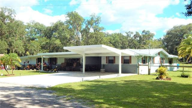 17639 Palamino Lake Drive, Dade City, FL 33523 (MLS #T3270400) :: Griffin Group