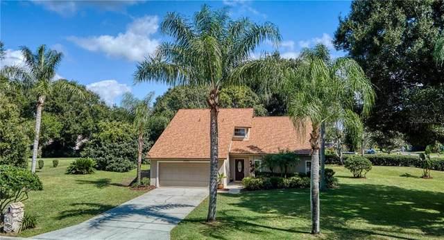 15701 Berea Drive, Odessa, FL 33556 (MLS #T3270436) :: Team Bohannon Keller Williams, Tampa Properties