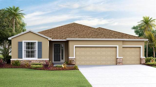 35820 Iron Redding Court, Zephyrhills, FL 33541 (MLS #T3270591) :: Bridge Realty Group