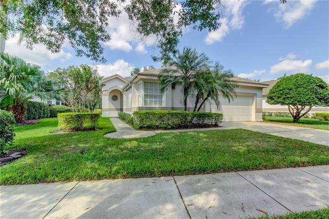 12215 Glencliff Circle, Tampa, FL 33626 (MLS #T3270621) :: Frankenstein Home Team