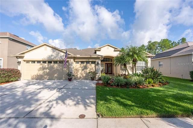 18116 Kara Court, Tampa, FL 33647 (MLS #T3270718) :: Young Real Estate