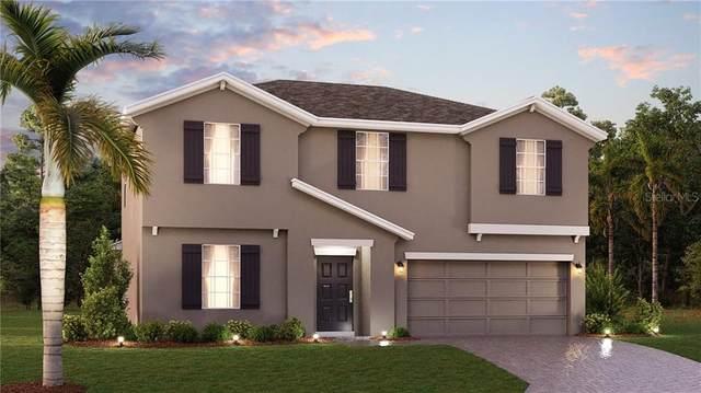 76 White Horse Way, Groveland, FL 34736 (MLS #T3270782) :: Frankenstein Home Team