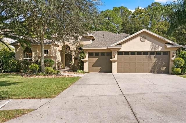 12905 Framingham Court, Tampa, FL 33626 (MLS #T3270797) :: Griffin Group