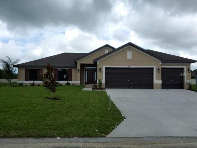 13150 Summerfield Way, Dade City, FL 33525 (MLS #T3270849) :: Team Buky