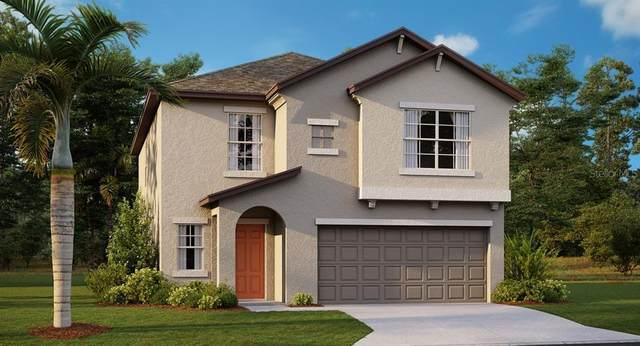818 Olive Conch Street NW, Ruskin, FL 33570 (MLS #T3270975) :: Frankenstein Home Team