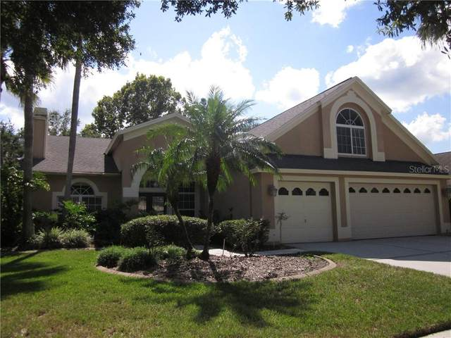 10209 Thicket Point Way, Tampa, FL 33647 (MLS #T3271013) :: Team Bohannon Keller Williams, Tampa Properties