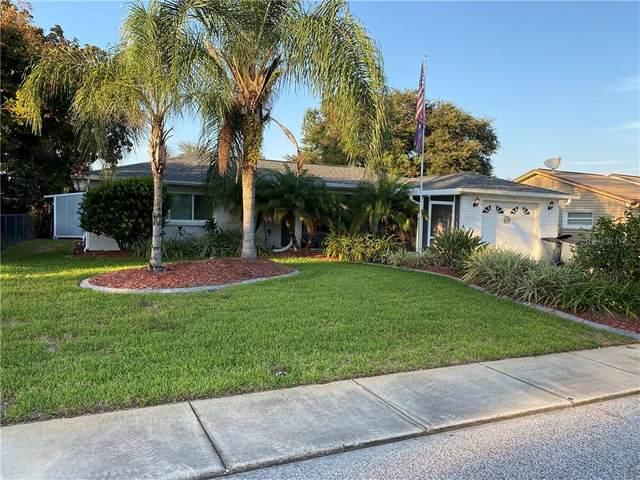 7317 Fairfax Drive, Port Richey, FL 34668 (MLS #T3271016) :: Pepine Realty