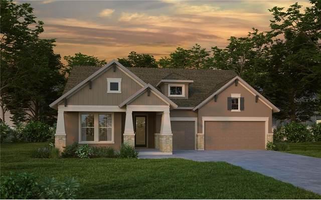 5925 Silver Sun Drive, Apollo Beach, FL 33572 (MLS #T3271042) :: Frankenstein Home Team