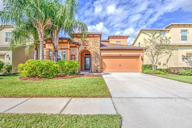 4427 Scarlet Loop, Wesley Chapel, FL 33544 (MLS #T3271044) :: Team Bohannon Keller Williams, Tampa Properties