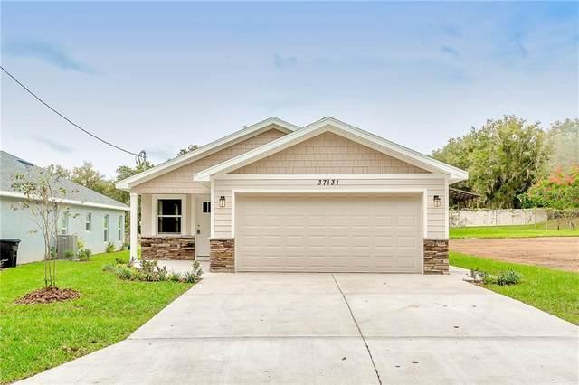 37131 Florida Avenue, Dade City, FL 33525 (MLS #T3271090) :: Real Estate Chicks