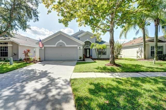 16827 Hawkridge Road, Lithia, FL 33547 (MLS #T3271115) :: Dalton Wade Real Estate Group