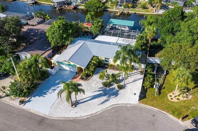905 Sago Palm Way, Apollo Beach, FL 33572 (MLS #T3271128) :: Dalton Wade Real Estate Group