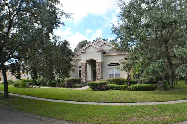 16420 Dunlindale Drive, Lithia, FL 33547 (MLS #T3271150) :: Frankenstein Home Team