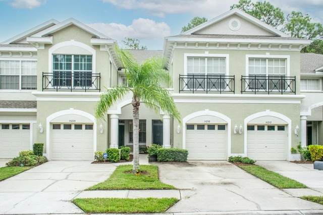 14228 Waterville Circle, Tampa, FL 33626 (MLS #T3271217) :: Pristine Properties