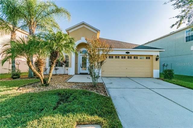 11011 Ancient Futures Drive, Tampa, FL 33647 (MLS #T3271239) :: Dalton Wade Real Estate Group