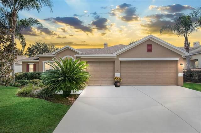 8524 Northton Groves Boulevard, Odessa, FL 33556 (MLS #T3271246) :: Pepine Realty