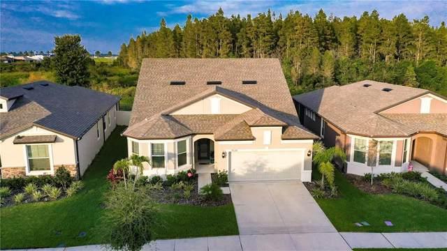 7634 Pool Compass Loop, Wesley Chapel, FL 33545 (MLS #T3271287) :: Frankenstein Home Team
