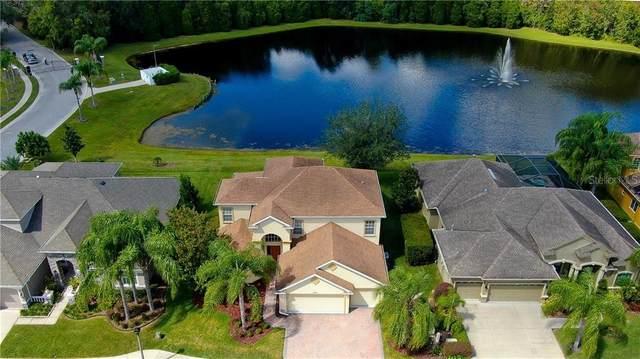14929 Man O War Drive, Odessa, FL 33556 (MLS #T3271300) :: Team Bohannon Keller Williams, Tampa Properties