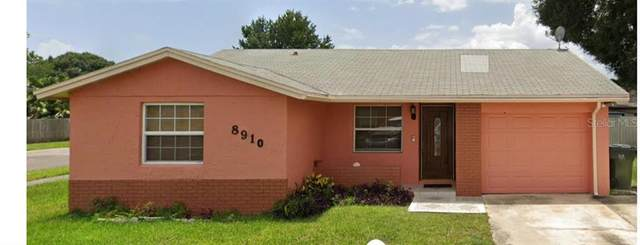 8910 Shady Tree Court, Tampa, FL 33634 (MLS #T3271306) :: New Home Partners