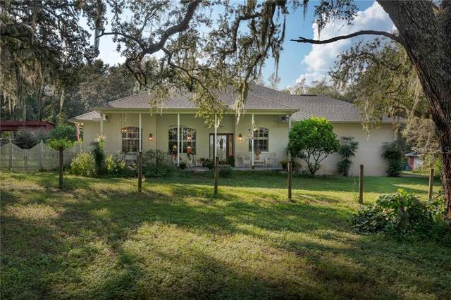 19613 Equestrian Lane, Dade City, FL 33523 (MLS #T3271336) :: Pepine Realty
