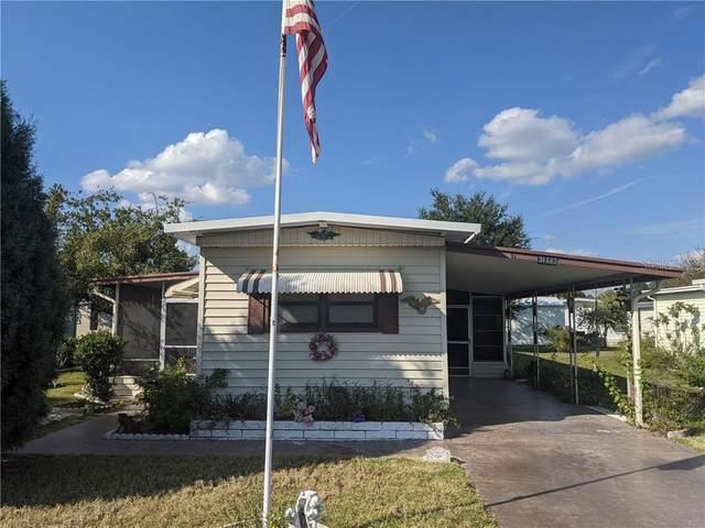 34643 Petunia Place, Zephyrhills, FL 33541 (MLS #T3271346) :: The Light Team