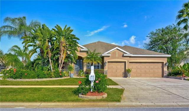 21146 Preservation Drive, Land O Lakes, FL 34638 (MLS #T3271354) :: Your Florida House Team