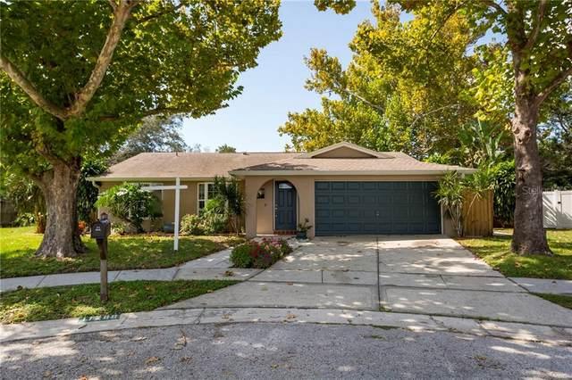 11280 Freedom Court, Seminole, FL 33772 (MLS #T3271361) :: Your Florida House Team