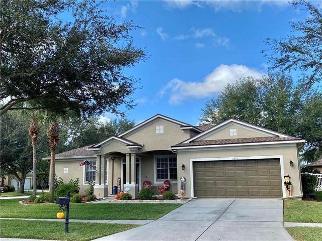 11723 Holly Creek Drive, Riverview, FL 33569 (MLS #T3271375) :: Frankenstein Home Team
