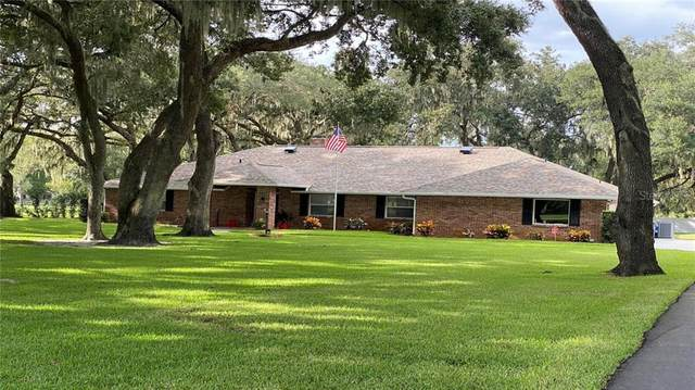 13316 Lewis Raulerson Road, Dover, FL 33527 (MLS #T3271378) :: The Duncan Duo Team